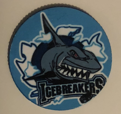 IceBreakers Plastic Poker Chip Magnets